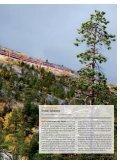 Jernbanemagasinet nr7 2013 - Jernbaneverket - Page 3