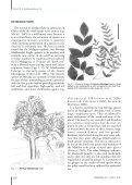 Moringa hildebrandtii (Moringaceae) - Le Muséum national d ... - Page 2