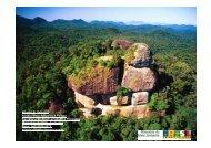 Wigold Schaffer - Reserva da Biosfera da Mata Atlântica