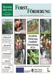Steiermark - BFW