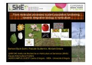 Keynote address: From molecular processes to plant ... - Inra