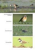 broschüre naturpark - Naturparke - Seite 7