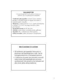 (Microsoft PowerPoint - ISF - Antibiotici Dalbaeptidi.ppt [modalità ...