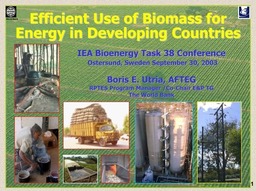 Efficient Use of Biomass for Energy in Developing Countries