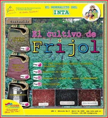 El Morralito de Frijol - magfor