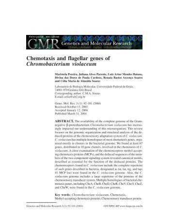 Chemotaxis and flagellar genes of ... - ResearchGate