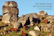 Magazin Natur 2013: Die Wildpferde ( Garranos) - Perlenfänger.com