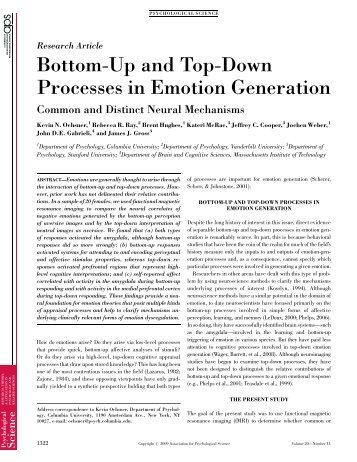 Bottom-Up and Top-Down Processes in Emotion Generation