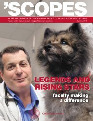July 2011 - The College of Veterinary Medicine at Cornell University