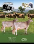 Catalogue - Canadian Brown Swiss & Braunvieh Association - Page 2