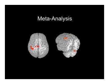 Clinical fMRI LEC24 Meta-analysis - Neurometrika