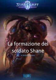 La formazione del soldato Shane