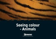 Seeing colour - Animals - Resene