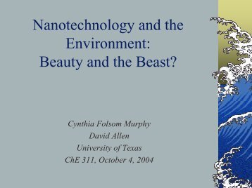 Nanotechnology and the Environment: Beauty and/or the Beast?