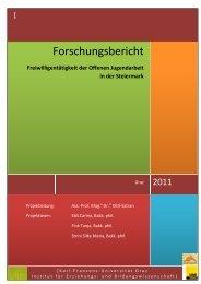 Forschungsbericht - Dachverband der Offenen Jugendarbeit