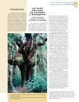 Dynamiques des forêts naturelles de montagne à Madagascar - Page 3