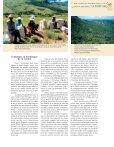 Dynamiques des forêts naturelles de montagne à Madagascar - Page 7
