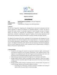 UNHCR Objective Coordinator in UN Joint Programme ... - CINU