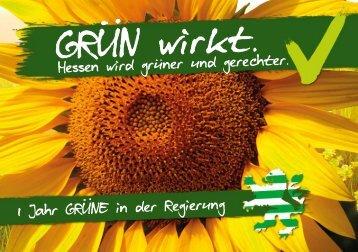 1_Jahr_GRUENE_in_der_Regierung-WEB
