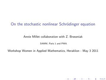 On the stochastic non linear Schrödinger equation - ACMAC