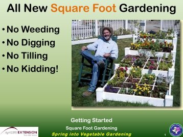 Square Foot Garden Concepts