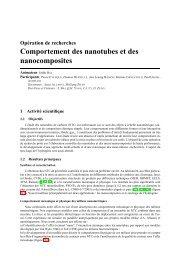 Comportement des nanotubes et des nanocomposites