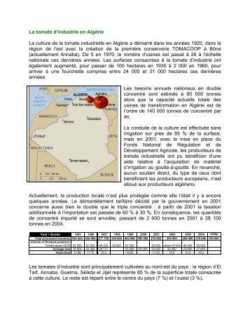 La tomate d'industrie en Algérie