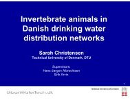 Invertebrate animals in Danish drinking water distribution networks