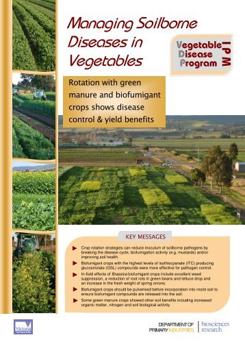 Vegetables magazines for Soil borne diseases
