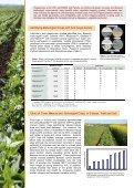 Managing Soilborne Diseases in Vegetables - Page 2