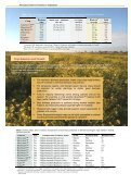 Managing Soilborne Diseases in Vegetables - Page 3