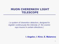 MUON CHERENKOV LIGHT TELESCOPE