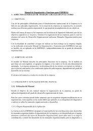 Manual de Organización y funciones de la EMPRESA - Desarrollo ...