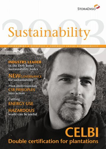 Stakeholders' concerns and questions - Stora Enso