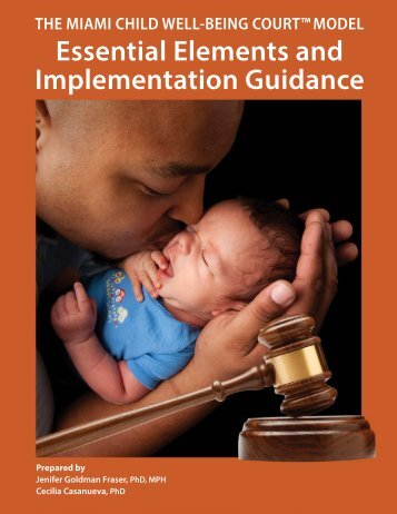 ImplementationGuidance_01-30-13_web2_FNL - Harris County ...