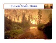 Fire and Smoke (Part 1) case study