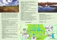 EST - Keskkonnaamet