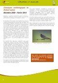 Quel froid de canard! - Natagora - Page 4