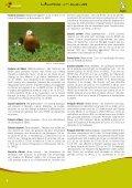 Quel froid de canard! - Natagora - Page 6