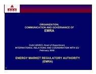 Organization, Communication and Governance of EMRA