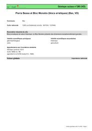 Pierra Besse et Bloc Monstre (blocs erratiques) (Bex, VD) - admin.ch
