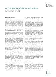 III. 8. Mejoramiento genético de Grevillea robusta