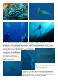 October 2009 Newsletter - DolphinUnderwater.org - Page 7