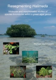 Halimeda - Phycology Research Group, Ghent University