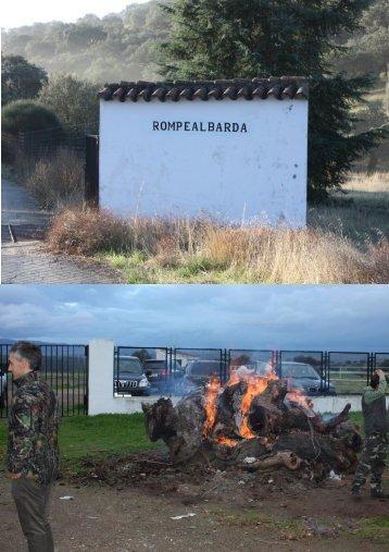 Info - Ardesa