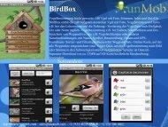 BirdBox - RunMob