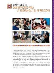 Orientaciones para la Enseñanza y el Aprendizaje - La Educación ...