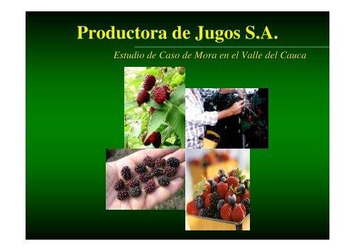 Productora de Jugos S.A. - Cecodes