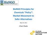 Cheri Peele, Clean Production Action, BizNGO Guiding Principles ...