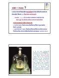 F - โรงเรียนมหิดลวิทยานุสรณ์ - Page 6